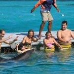 Vale super apena esse contato com os golfinhos.