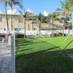 Grassy side lawn at the Tides Inn