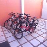 Bicicletas de cortesia