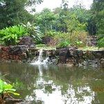 El Bio Parque