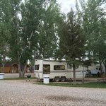 RVs parked happilly under shady trees at Ten Broek