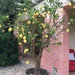 Photo of Masseria Picca Picca