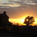 Wooldown at sunset