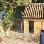 Photo of Agriturismo Casale San Filippo