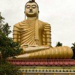 Bouddha 50 mètres de haut