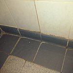 Dirty disgusting mouldy tiles and grouting in our bathroom