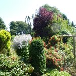 Stanton Hall Garden - July 2014