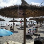 Beach beds for hire