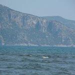 река Дальян сливается со Средиземным морем