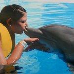 Cancun com os golfinhos
