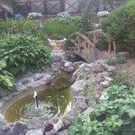 Petit jardinet