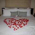 Room 50 aniversary