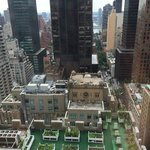 Waldorf rooftop herb garden & view to East River