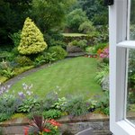 view from the garden room