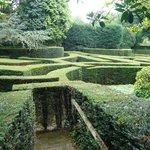 Labyrinthe-cherchez le minotaure !
