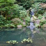Pool at Portland Japanese Garden