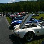 the Sunday car show - Cobra section