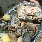 Yum-yum lunch prepared by a fisherman and his lunch!