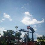 fun rollercoasters