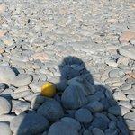 """Eine Orange als Vergleich am """"Strand"""""""
