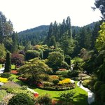 View of Butchart Gardens