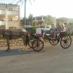 horse drawn evening stroll along the coastline from outside the hotel