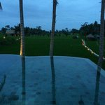 View of the pool at dusk