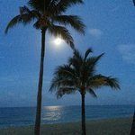The view of the beach @ night with The moonlight reflecting off the sea.