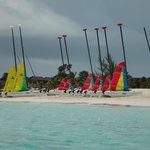 vela sailing