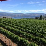 view from the deck outside the winetasting room