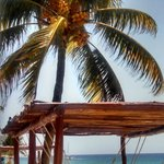 hammocks in the shade...ahhh