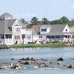 Pony swim 2014