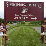 Silver Springs Winery L.L.C.