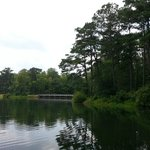Lake Course at Tree Top Adventure