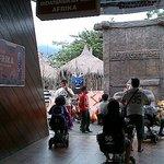 Museum Satwa - Batu Secret Zoo