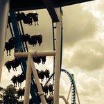 Roller coaster at Cedar Point!