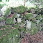 Nearby falls walk- stone wall