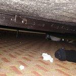under bed #1