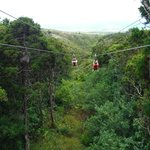 One of 7 zip lines