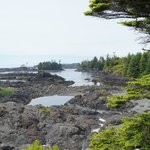 Wild West Trail.Ucluelet BC