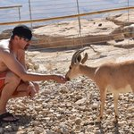 Petting a mountain goat outside our room
