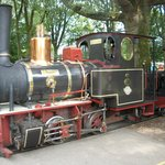 """This original """"Old steam locomotive"""" takes you around the parc..."""