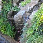 One of the wonderful waterfalls