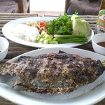 BBQ fish with herb