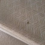 damaged fabric on seat