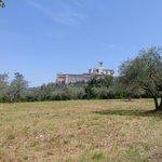 la vista di Assisi mentre si sale dall hotel