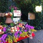 banco di frutta autunnale