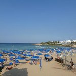 fig tree bay just a 5 min walk from the apartments
