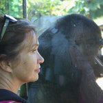 The Wife and the Ape.. by qpo70