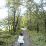 宿からの散歩コース